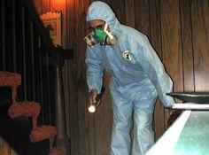 MUSTY ODORS VS. MOLD, http://biowashing.blogspot.com/2015/09/musty-odors-vs-mold.html