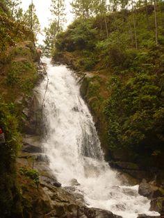 La Yeguada en Panama. Super lindo spot para camping! me encanta!
