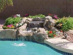 1000 images about gardening on pinterest potted plants for Plants for pool area
