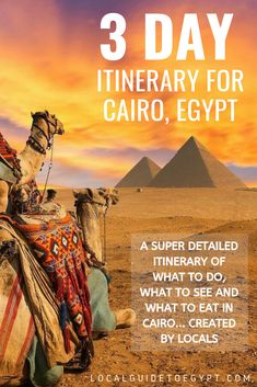 3 day itinerary for Cairo, Egypt -- all the details on where to go, what to see and what to eat to make the most of your 36 hours in Cairo. Beautiful Hotels, Beautiful Places To Visit, Cool Places To Visit, Egypt Travel, Africa Travel, Vacation Destinations, Dream Vacations, Travel Guides, Travel Tips