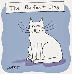 Funny cat joke cartoon picture