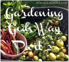 Gardening God's Way Part 2 - IdlewildAlaska