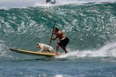 Können offenbar nicht ohne einander: Mensch und Hund.