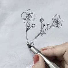 A project for in the making. Thank you Lily! And yes, I do use my fountain pen turned around. The top side of the nib gives me finer lines. Buttercup, Fountain Pen, Flower Art, Give It To Me, Lily, Hair Accessories, Artists, Photo And Video, Female