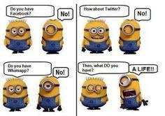 Minion funny