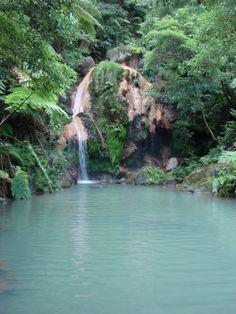 Caldeira Velha, Sao Miguel, Azores.
