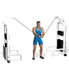 CABLE CROSSOVER INVOLVED MUSCLES DURING THE TRAINING CHEST