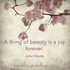 https://www.facebook.com/blossomANDleap?ref=tn_tnmn  A thing of beauty is a joy forever   John Keats   Quote