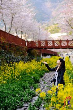 서영균 - Feel the Spring  Nikon D3X - 85mm  f/2.2, 1/320sec, ISO100