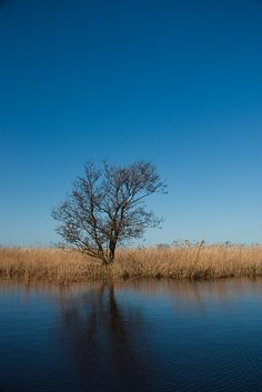 (De Alde Feanen)..soms mis ik Friesland...