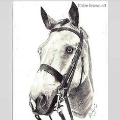 Custom Pencil horse Portrait Custom Pencils, Chloe Brown, Horse Portrait, Contemporary Artwork, Pet Portraits, Original Artwork, Horses, Pets, Drawings