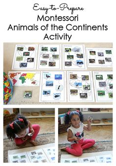 This Montessori animals of the continents is easy to prepare and can be adapted for toddlers through early elementary at home or in the classroom.