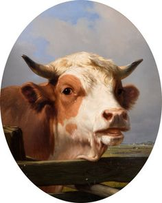 Bull's Head by Eugene Joseph Verboeckhoven, From the collections of Wednesbury Museum and Art Gallery. Unframed prints from Aberdeen Art Gallery, Buy Prints Online, Framed Postcards, Wolf, Birmingham Museum, History Posters, City Gallery, Walker Art, Victoria And Albert Museum