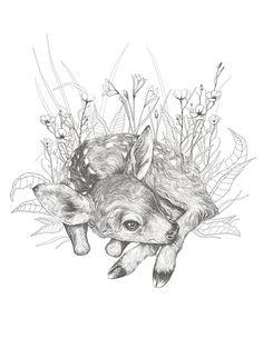 Little Fawn Illustration Original Print - 8.5 x 11 - Deer Art - Animal Drawing - Fine Art - Wall Art - Nursery Decor