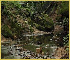 Beautiful site - Durward's Glen