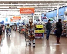 people-of-walmart-part-120-pic-2