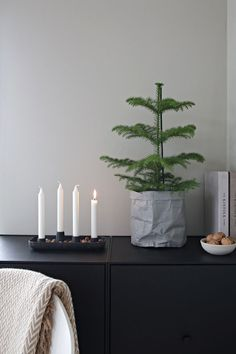 photo © Nina Holst THE FIRST DAY OF ADVENT Popping by to wish a nice first day of Advent. The first candle is lit, and finally I can slowly begin with. Scandinavian Christmas Trees, Scandi Christmas, Pallet Christmas Tree, Christmas Interiors, Minimalist Christmas, Noel Christmas, Christmas Candles, Modern Christmas, Beautiful Christmas