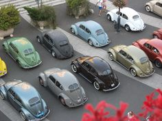 Beetle - oldsklworld: taste the rainbow! My Dream Car, Dream Cars, Kdf Wagen, Bug Car, Automobile, Vw Vintage, Cool Vans, Vw Cars, Vw Camper