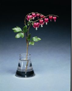 Stalking the Belle Époque: Gifts of Grandeur: Queen Mary's Fabergé Bleeding Heart, 1900