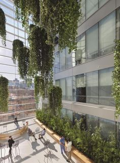 A five-story garden atrium brings daylight deep into the patient tower, providing patient rooms along the core of the building access to natural light and views to the outdoors. Photo credit: © Anton Grassl/Esto.