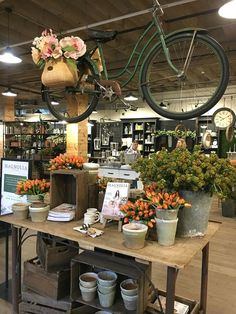 My Trip To Magnolia Market & 5 Things to Know if You Visit
