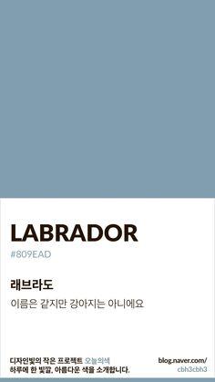 Color of today: Labrador디자인빛의 작은 프로젝트 오늘의색은 하루에 한 빛깔, 아름다운 색과 재미있는...