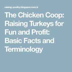 The Chicken Coop: Raising Turkeys for Fun and Profit: Basic Facts and Terminology