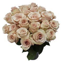 FiftyFlowers.com - Quick Sand Cream Roses