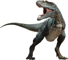 The rise of terrible lizard Dinosaurs in the World – Journal Edge