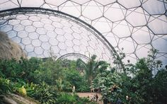 Giant bubbles surrounded by beautiful plants – this is what you first make of it when you see the largest greenhouse in the world. Description from luxedb.com. I searched for this on bing.com/images