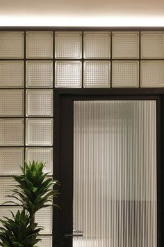 Reeded glass block wall & reeded glass door wall Sleek in the City — Design Anthology Interior Walls, Home Interior, Glass Blocks Wall, Block Wall, Glass Walls, Glass Doors, Reeded Glass, Glass Brick, Old Apartments