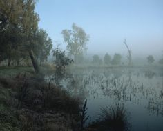 Wouter Van de Voorde - paysages brumeux au lever du soleil.
