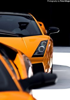 111 Best Lamborghini Images On Pinterest Ferrari Rolling Carts And Expensive Cars