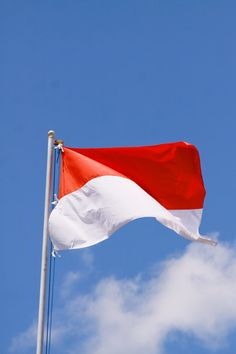 Bendera Indonesia Wallpaper : bendera, indonesia, wallpaper, Indonesia, Ideas, Indonesian, Flag,, Independence