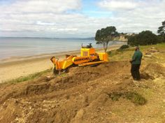 Nice day Stump grinding at the beach Grinding, Auckland, Good Day, Nice, Beach, Buen Dia, Good Morning, Hapy Day, The Beach