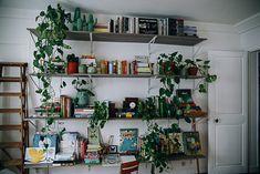 Un mur de livres et de plantes – Et Dieu Créa