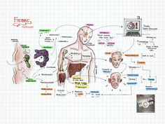 La Chuleta de Osler, cómo estudiar medicina | Blog EMP