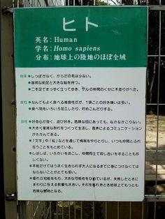 愛知県にある、日本モンキーパーク には、こんな檻がある。 そこは鍵もなく、誰でも入れるようになっている。