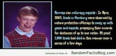 More Facts at - www.RandomFactsBlog.com