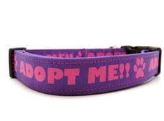 Adopt Me Purple Dog Collar  1 Wide  Medium & by MuttsandMittens, $18.00