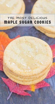 These Soft Maple Sugar Cookies make a delicious fall treat. Packed with a buttery taste and a hint of pure maple syrup, these soft and chewy cookies will quickly become a new favorite! #cookies #sugarcookies #sugarcookierecipe #maplesugarcookies #maplerecipe #fallcookie #falldessert #dessert