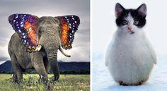Ecco cosa succederebbe se madre natura sapesse usare Photoshop