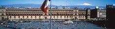 Hoteles Pet Friendly en Ciudad de México