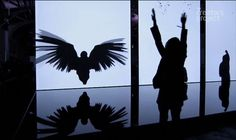 "Amazing Art Installation Turns You Into a Bird | Chris Milk ""The Treachery of Sanctuary"" on Vimeo"