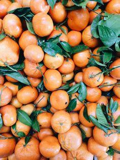 Citrus.  | Gabrielle Assaf | VSCO Grid