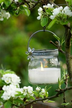 A candle jar hanging from a branch. Great outdoor lighting, especially in the spring when the tree is in bloom. Dream Garden, Garden Art, Diy Décoration, White Gardens, My Secret Garden, Candle Lanterns, Hanging Candles, Candle Decorations, Mason Jar Lanterns