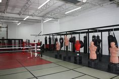 Legends MMA Mma, Legends, My Favorite Things, Gallery, Roof Rack, Mixed Martial Arts