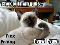 This is my Flex Friday Pic. My guns are so sore today, but I am getting stronger!!