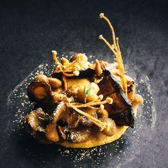 Crispy wild Mushrooms on buttery roast garlic pavlova Food Garnishes, Garnishing, Modernist Cuisine, Bistro Food, Food Plating, Food Presentation, Food Design, Food Art, Yummy Food