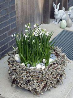 Osterdeko: Osternest aus Kätzchenweide mit Frühlingsblumen